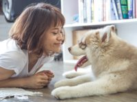 Bringing a Pet Home for the First Time: Things to Know