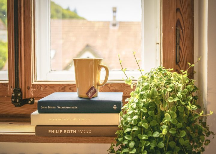 Bringing More Natural Elements Into Your Home