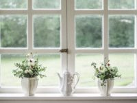 Easy Home Improvements to Make This Summer